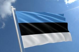 как живут в эстонии обычные люди